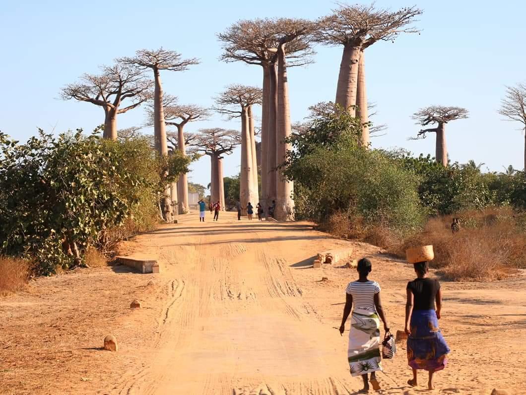 Afrique Actualités est en vacances !
